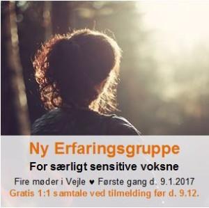 Erfaringsgruppe for særligt sensitive - TrivselsGuide.dk