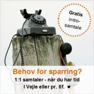 1:1 sparring - TrivselsGuide.dk